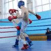 В открытом чемпионате области по кикбоксингу 167 бойцов выступали в семи возрастных группах