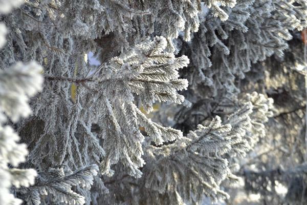 Погода 22февраля: снегопады, метели итуман